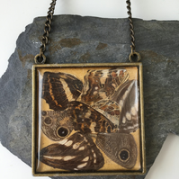 Large Butterfly Wing Ethical Square Pendant