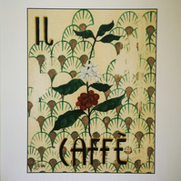 Il Caffe 'The Coffee (plant)'