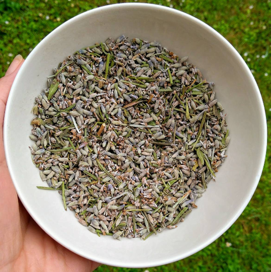 Dried Lavender, Loose Lavender, Lavender Buds, Natural, Relax, Dried Flower