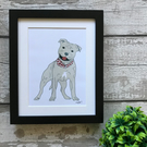 Staffordshire Bull Terrier - Mounted Print