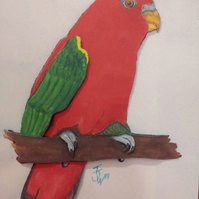 King Parrot Decoupage Birthday card