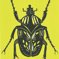 Beetle - yellow and lime
