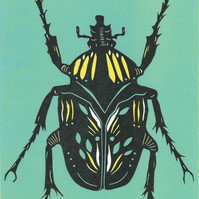 Green and yellow Beetle