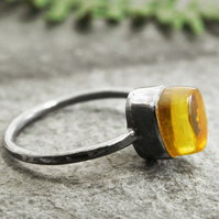 Baltic Amber Ring in Blackened Sterling Silver