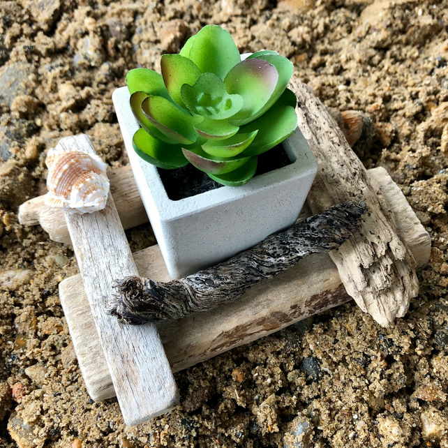 Driftwood plant holder decoration