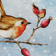 Robin Christmas Cards Pack of 5