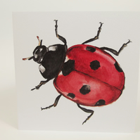 Ladybird Greetings Card - Blank Card