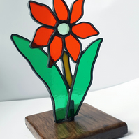 Star shaped suncatcher red dahlia mounted on wooden base