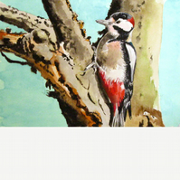 Great spotted woodpecker. Original watercolour.