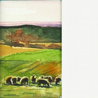 Grazing sheep. Original watercolour.