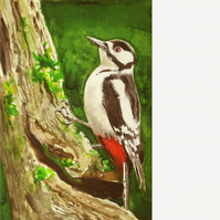 Great spotted woodpecker. Signed, original painting.