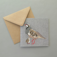 Red-legged Partridge card