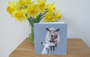 Farm animal greetings cards