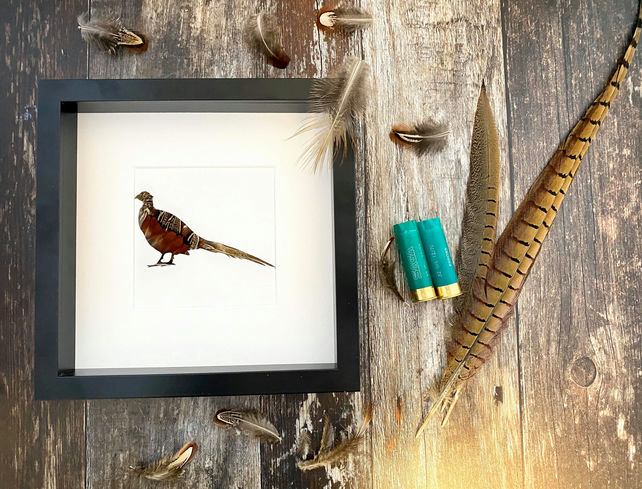 Natural Pheasant Feather Bird Silhouette Framed Art - Country Style Home
