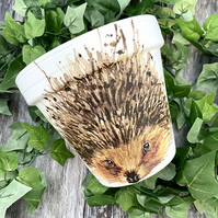 Hedgehog Terracotta Plant Pot - Unique Garden Decor