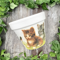 Cat Terracotta Flower Pot - Vintage Garden Decor