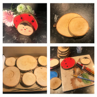 Rustic Natural Birch Wood Ladybug DIY Craft Kit