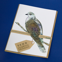 BIRDS dove card featured 3D