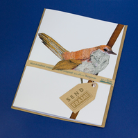 BIRDS warbler card featured 3D