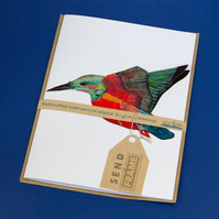 BIRDS kingfisher card featured 3D