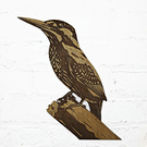 Kingfisher - Original engraved wooden wall art