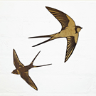 Pair of Swallows in Flight - Engraved wooden wall art