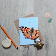 Butterfly Card Selection Pack