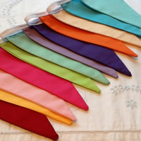 Rainbow Bunting - 12 flags 8.5 ft long