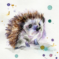 Baby hedgy A4 print
