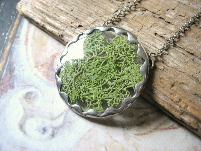 Moss Specimen - Natural Reindeer Moss, Vintage Glass, Hand Soldered Necklace