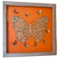 Butterfly, Box Frame Picture Wall Hanging