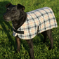 Fleece dog coat - Classic Tartan