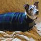 Fleece dog coat - Black Watch Tartan