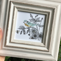 Framed Blue Tit Illustration, hand finished print, garden bird art