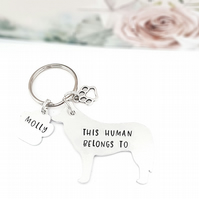 Border Collie Keyring, Hand Stamped 'This Human Belongs To' Keyring