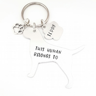 Border Terrier Keyring, Hand Stamped 'This Human Belongs To'
