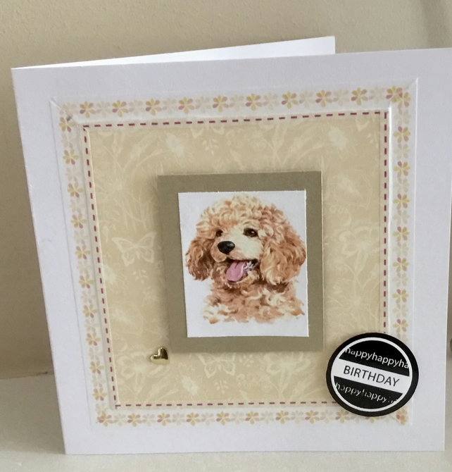 Golden poodle card