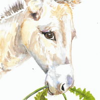 Donkey with dandelion flower, original painting