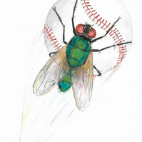 Fly Ball, Sport and a Fly. Original Painting