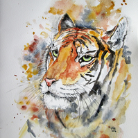 Tiger painting. Original watercolour painting
