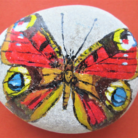 Peacock Butterfly painted on pebble
