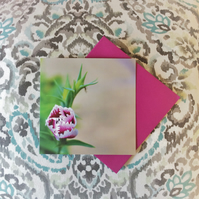 Unfurling Flower Greetings Card