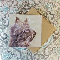 Koshka Cat Fine Art Card