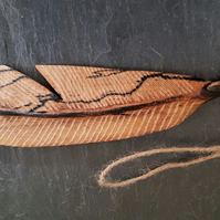 Single carved Feather (A)