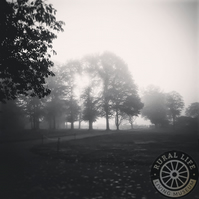 Misty Morning, 6x6in Black and White Photographic Art Print
