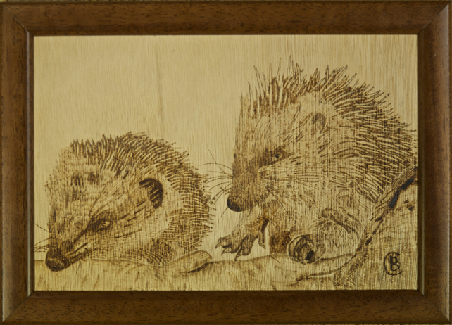 Original framed pyrography art of two baby hedgehogs