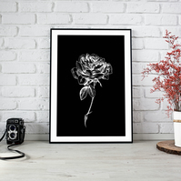 Black and White Rose Downloadable Print