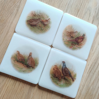 Game Bird Coaster