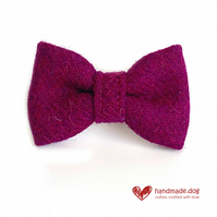 Plum 'Harris Tweed' Dog Bow Tie