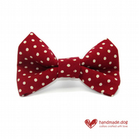 Red Spotty Dog Bow Tie